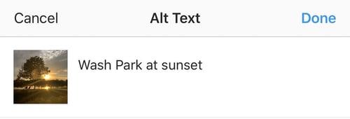 Instagram Example Alt Text